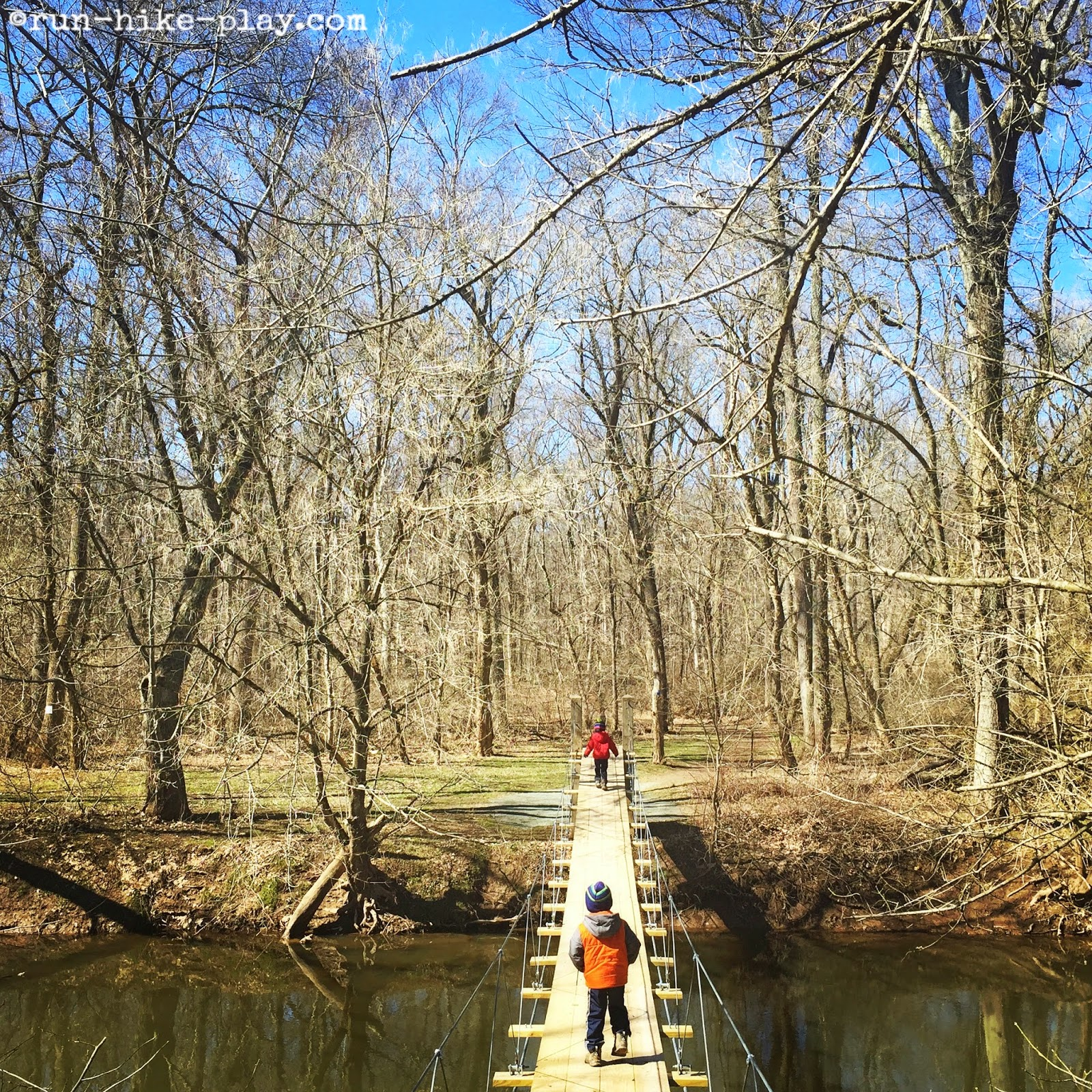 Institute Woods Swinging Bridge