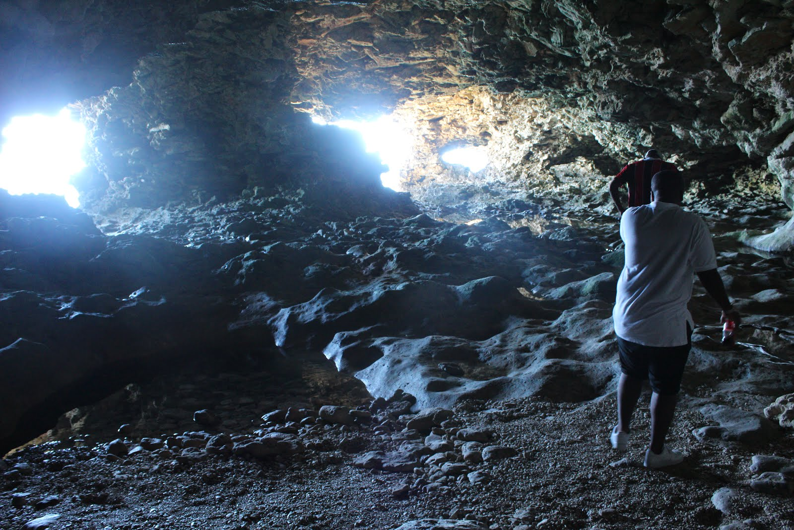 Inside Animal Flower Cave North Point St Lucy Barbados