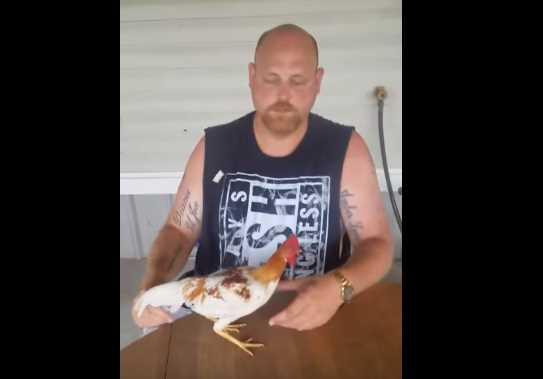 Wow! Pria Ini Bisa Hipnotis Ayam Lho