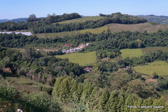 Tour Vinho e Paisagem da Vinícola Cristofoli em Bento Gonçalves