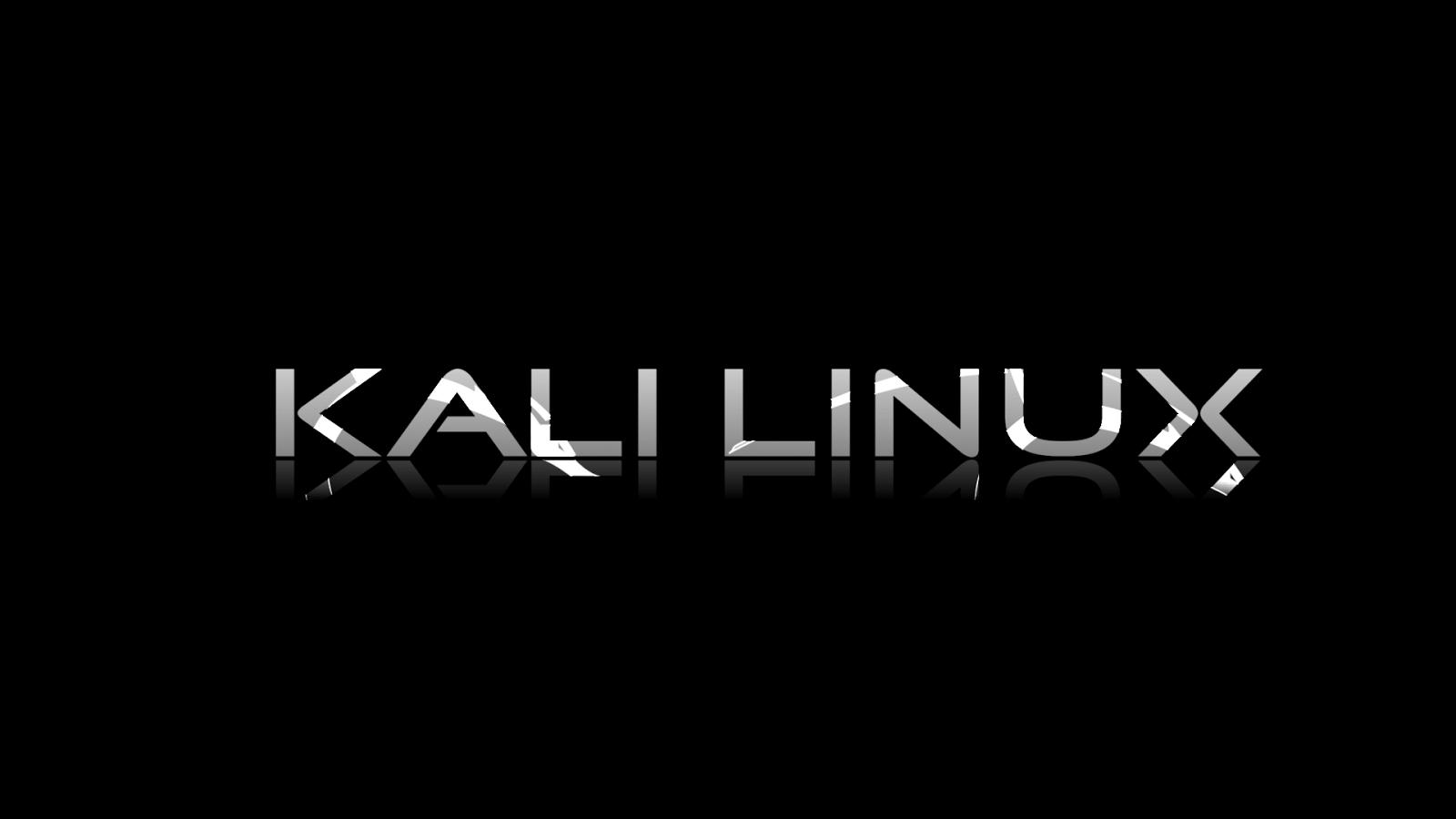 تحميل نظام kali linux برابط مباشر