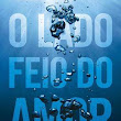 Resenha: O LADO FEIO DO AMOR (Ugly Love), da Colleen Hoover