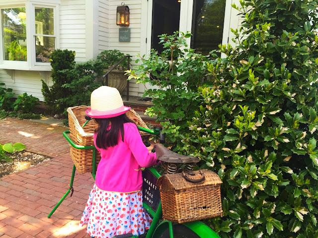 Bike   Rosewater Market   Chichi Mary Blog
