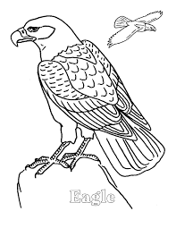 E For Eagle Alphabet Coloring Pages Animals