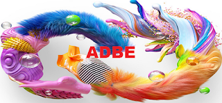 Stock trading : NASDAQ: ADBE Adobe stock price chart for Long-term forecast and position trading