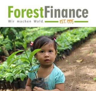 Forest Finance Wald Investment Deutschland Umweltfonds hochrentabel Rendite Anbieter Vergleich Bewertung