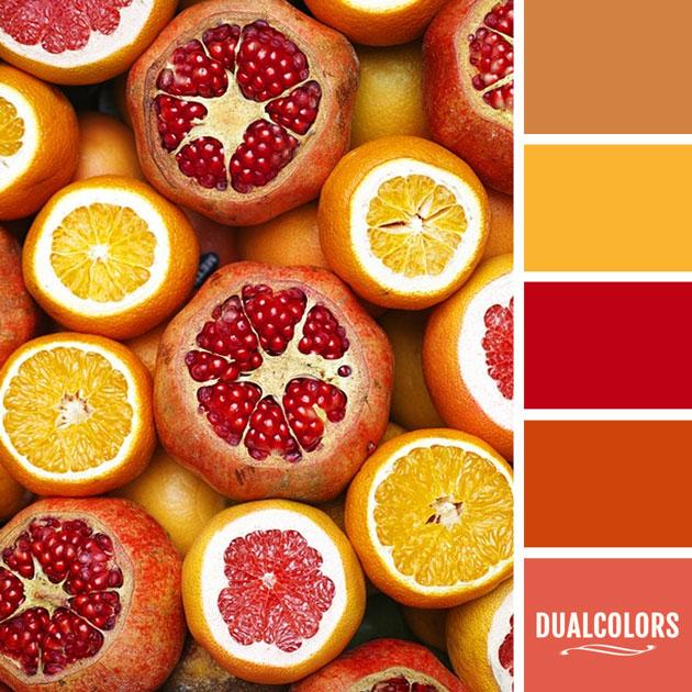 color_paleta_68