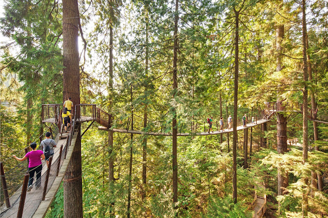 Tourism Vancouver/ Capilano Suspension Bridge Park Tourism Vancouver/ Capilano Suspension Bridge Park