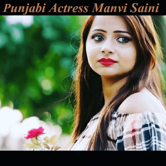 Manvi Saini Punjabi Model Actress HD Photo Pics Images Wallpaper