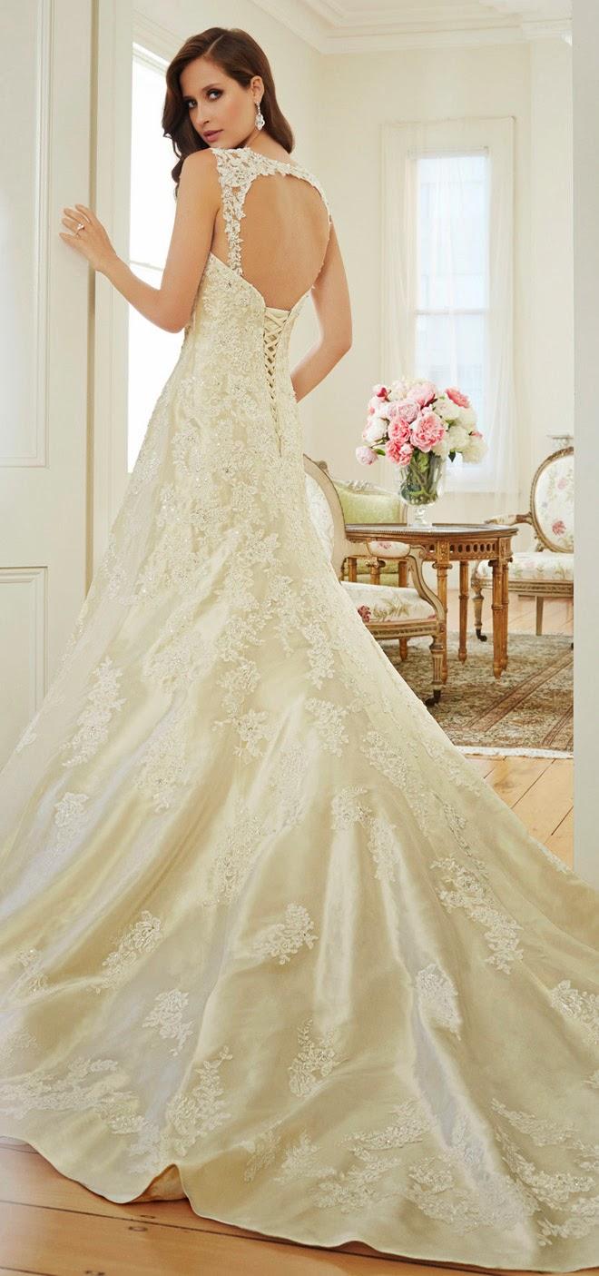 Luxurious Wedding Dresses 40 Amazing test