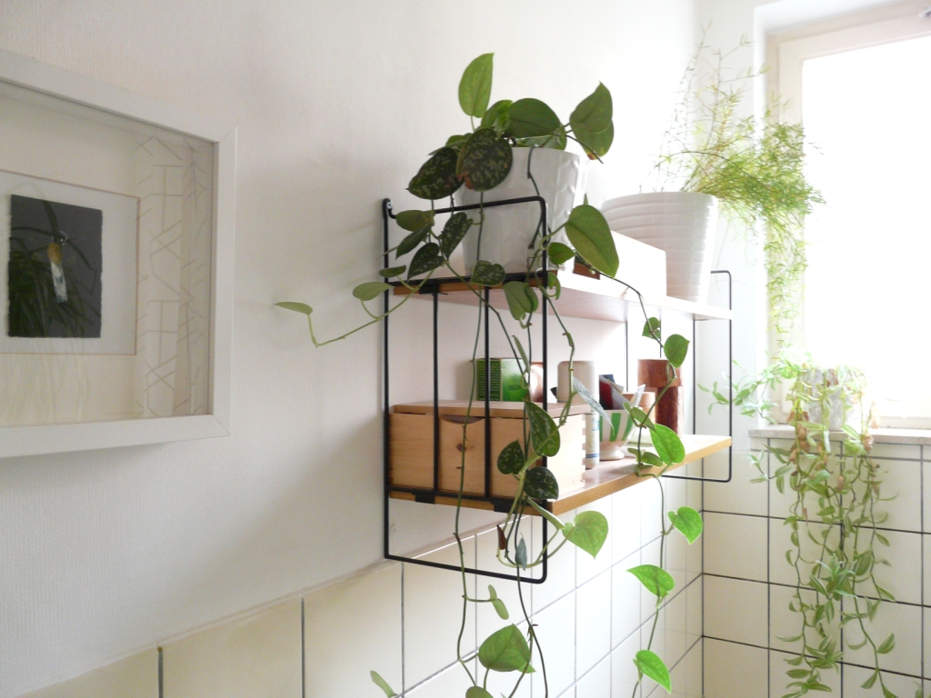 Try ThisBathroom ledge is a good storage space for those stuffs that you  don't often use. Add a small plant or diffuser on the ledge helps to  freshen up ...