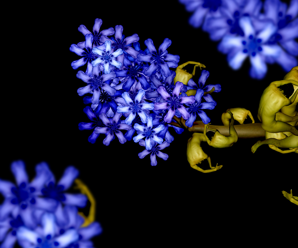 12-Blue-Lilac-Cecelia-Webber-Nature-Replicated-with-Nude-Models-www-designstack-co