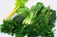 Anak SMP : Wajib Baca INi Sayuran Bagus Untuk Otak