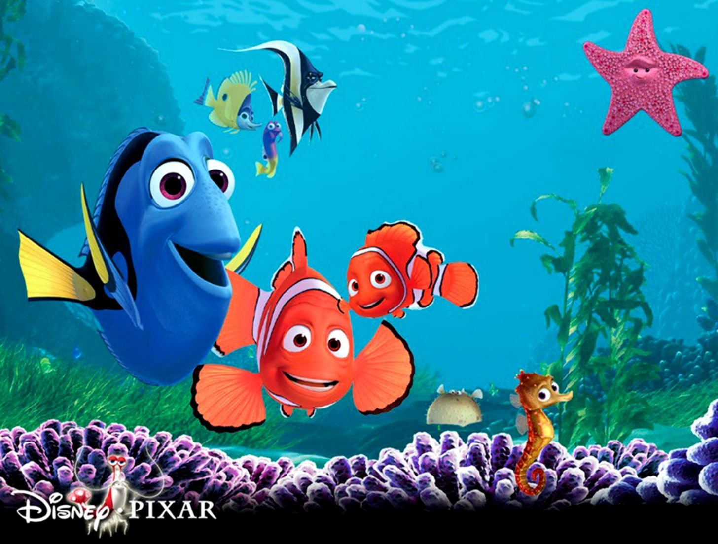 Finding Nemo 3d Wallpapers Wallpapers Box