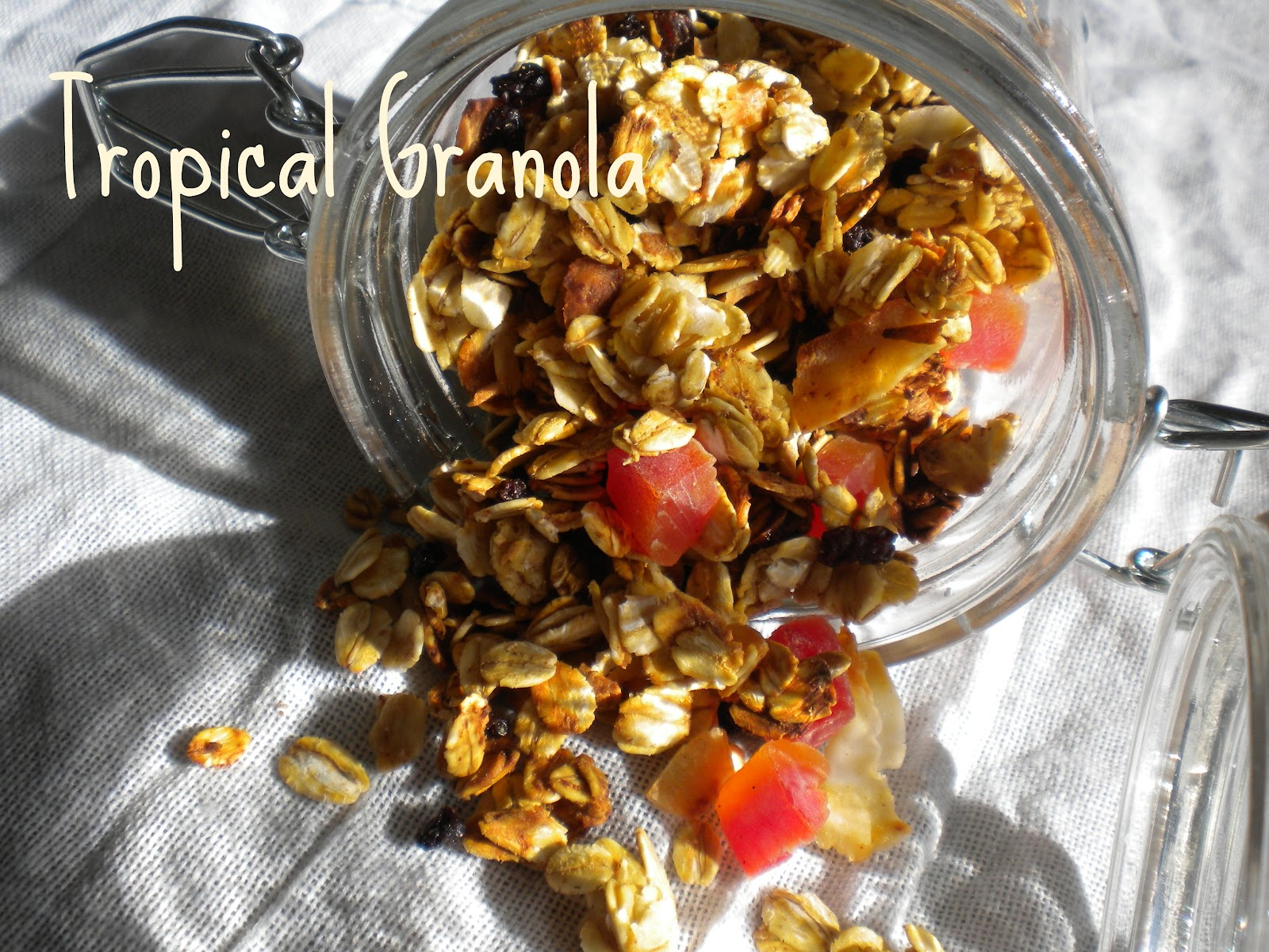 The Best Tropical Granola Ever - Treats With a Twist