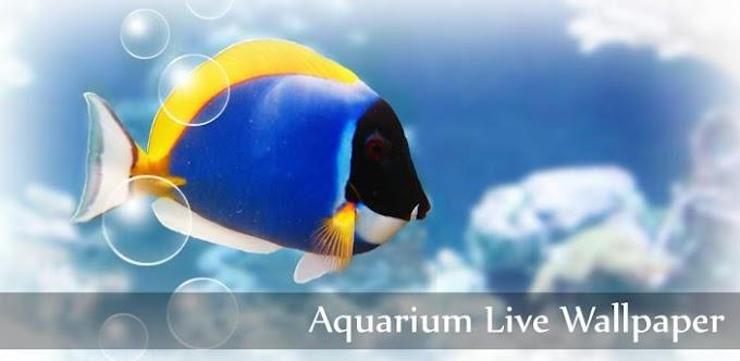 Instale um aquário interativo no celular