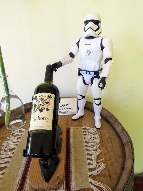 Day trips from Santiago: storm trooper and a bottle of wine from Flaherty Wines in Aconcagua Valley
