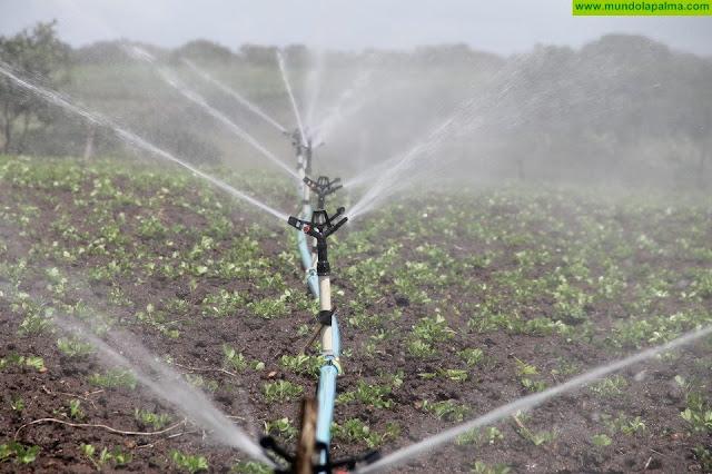 La Consejería de Agricultura destina 13,2 millones para infraestructuras agrícolas y de regadío en Canarias