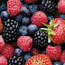 The Best Anti-Anxiety Foods