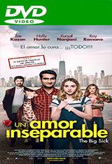 Un amor inseparable (2017) DVDRip Latino AC3 5.1