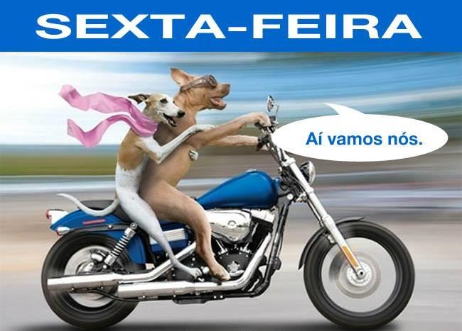 Zoeira Discreta #comédia: