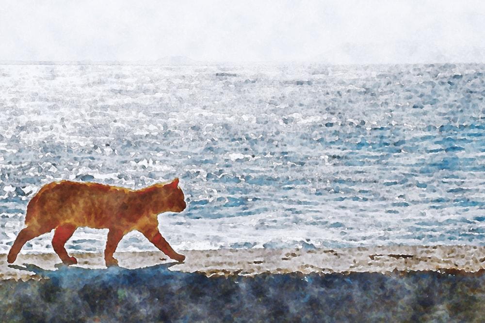 水彩画の海岸線を歩く猫
