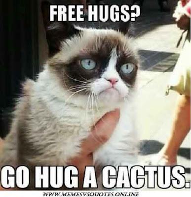 Hug A Cactus