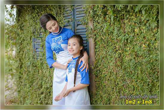 Sieu Thi Anh Kien Duoc Chuyen IN PHONG ANH CHUYEN NGHIEP Anh go anh go Mica anh Guong Pha le