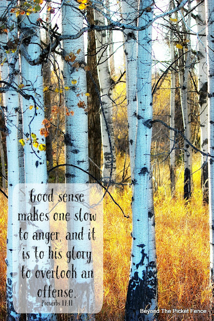 God's word, bible verse, inspiring verse, verse on not being offended, fall photography,http://bec4-beyondthepicketfence.blogspot.com/2015/10/sunday-verses_30.html