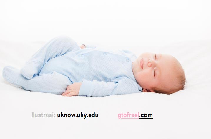 Penelitian Ini Bakal Menggaji 11 Juta Hanya Untuk Tidur! | GToFreeL