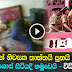 Three of a family commit suicide in Kotahena - Watch Video
