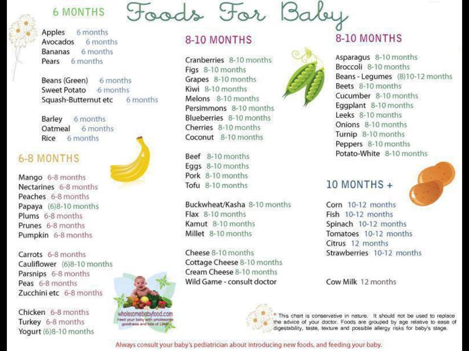 Bayi 6 Bulan Makan Nya Apa