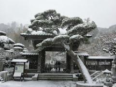 雪の長谷寺