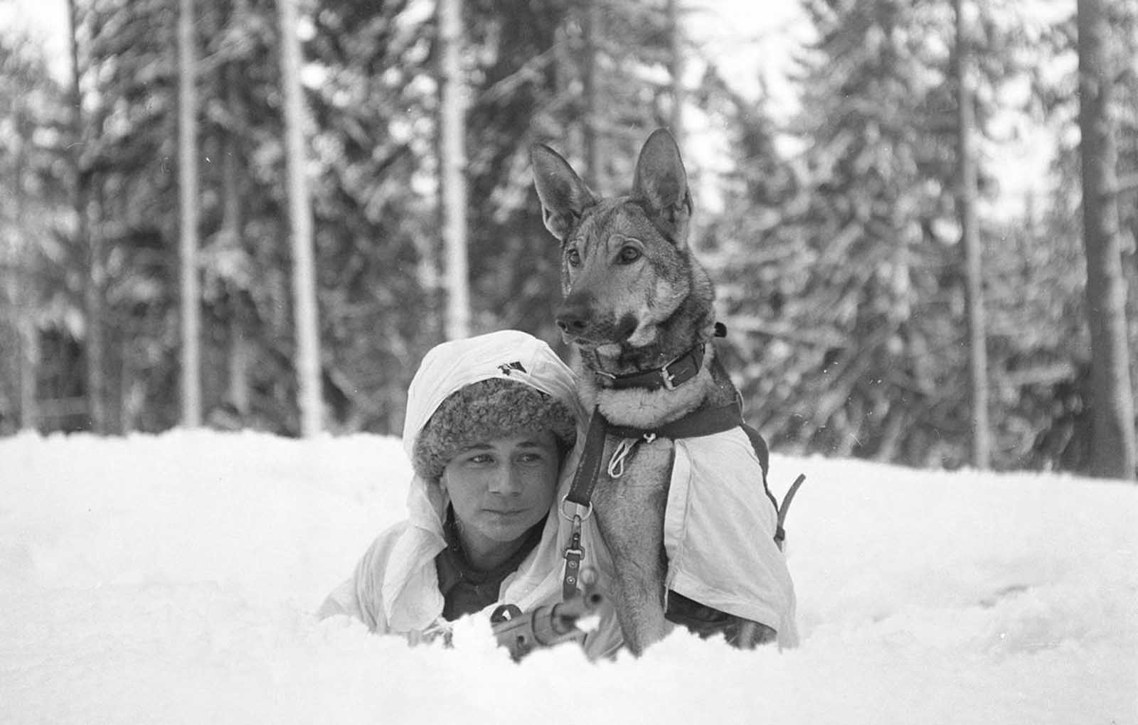 At the Hämeenlinna war dog school.