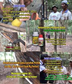 AGEN NASA DI Selebar Bengkulu - TELF 082334020868