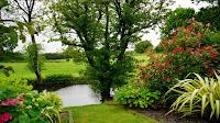 15 Ways To Enhance Your Backyard Winfield, Illinois - Image 10