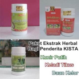 Paket Ekstrak Herbal dalam Kapsul | Kista | Kunir Putih | Keladi Tikus | Daun Kelor