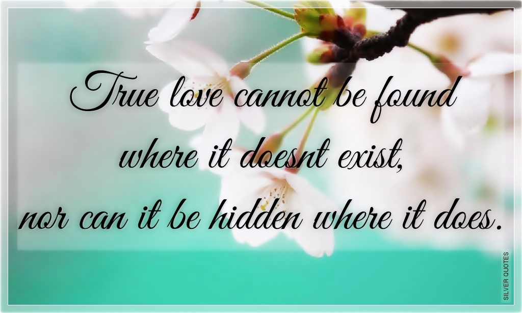 True Love Cannot Be Found Where It Doesnt Exist Silver Quotes