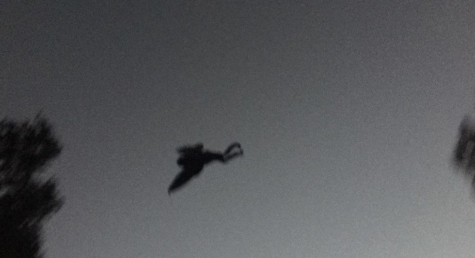 ataque nuclear, mothman, chicago phantom, homem mariposa, pesadelos