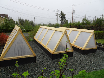 Lovely DIY How To Build Cold Frames Raised Bed Covers Newfoundland Gardening