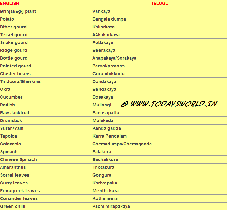 Vegetable Names From English To Telugu   Aravind The King