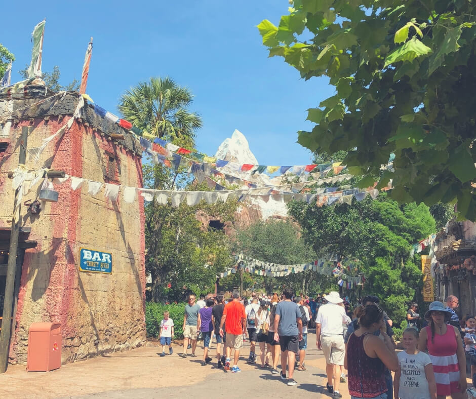 How To Cope With The Walking In Walt Disney World | Walking towards Expedition Everest in Animal Kingdom.