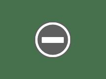 日本紅葉最前線2016