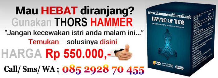 harga obat hammer of thor asli
