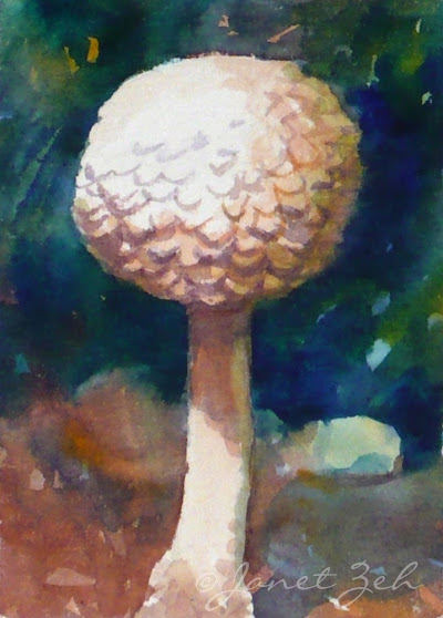 A small pale mushroom - one of my woodland paintings