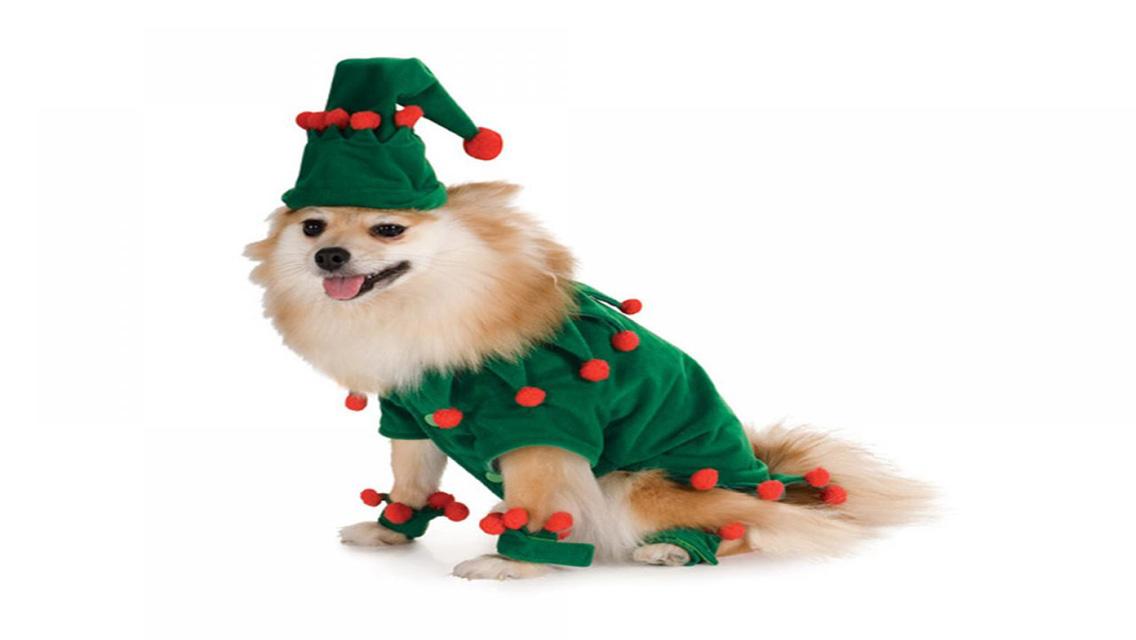 christmas puppy wallpaper - photo #25