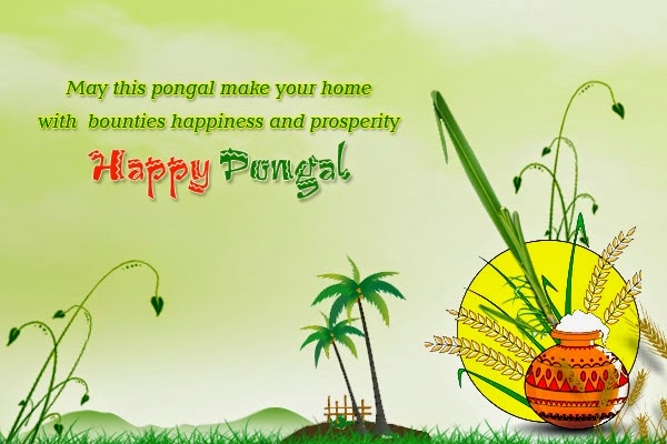 happy pongal 2018 images