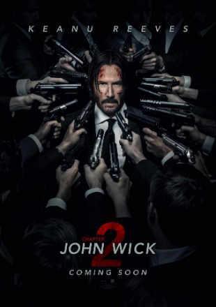 John Wick Chapter 2 (2017) BRRip 480p Dual Audio 300Mb Hindi Dubbed