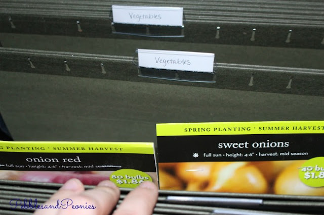 Use a dark filing box for saving seeds for your garden.