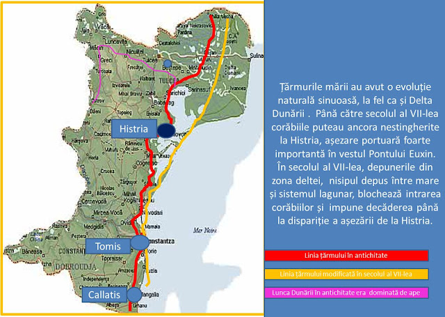 Evolutia tarmului Marii Negre in Dobrogea